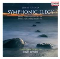 Symphonic Elegy
